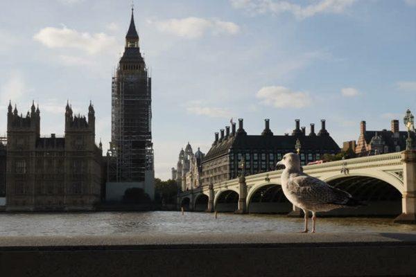 Maykenbel Apartments Early Bird Offer
