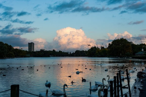 London without the Bustle – A new London